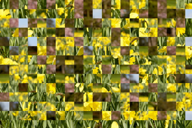 Puzzle: Dieser Effekt bricht das Foto in verschiedene Formen auf und verschiebt die einzelnen Teile an andere Stellen.