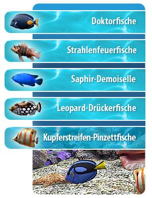 Pin alle fisch arten animal crossing wild world nintendo for Fische arten