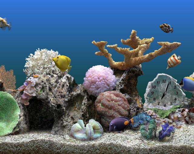 Transformez votre écran de PC en aquarium géant !