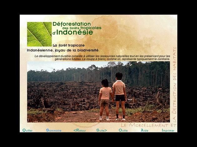 Le CD-Rom pour mieux comprendre les menaces qui pèsent sur la  biodiversité