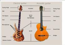 Get to know the guitar!