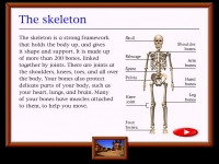 Clear lesson screens help you learn about different topics.