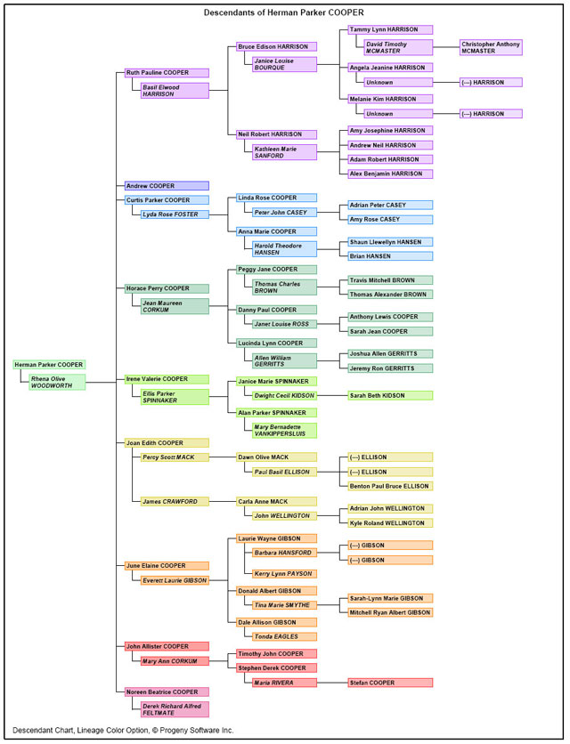 Create fantastic family tree charts using this dedicated chart-making software!