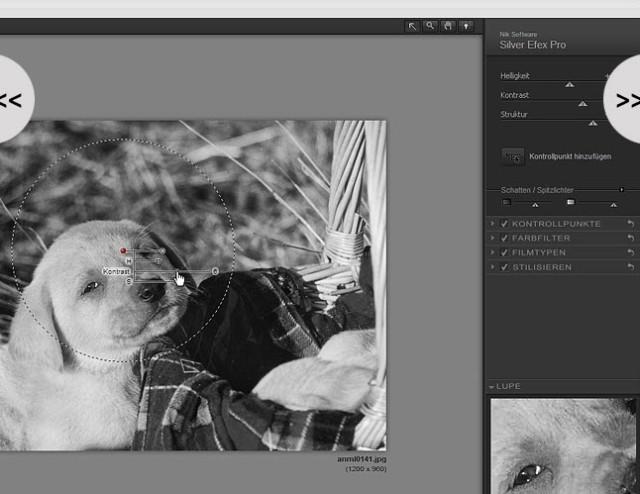 Künstlerische Bildbearbeitung in Schwarz-Weiß