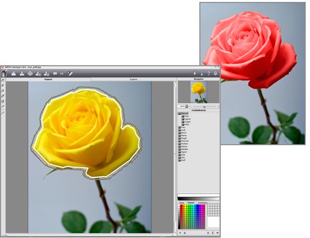 Der beliebteste Farbeffekt - bringt Leben in Ihre Fotos!