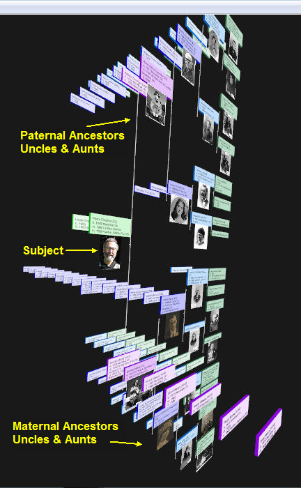 Convert your current genealogy files into 3D trees!
